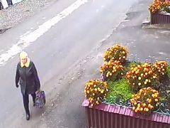 Кража цветов на улице Крупской — дожили!