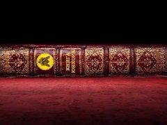 Знакомимся с творчеством писателей в новой программе «Книга юнкора»