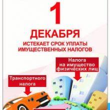 1 декабря истекает срок оплаты имущественных налогов