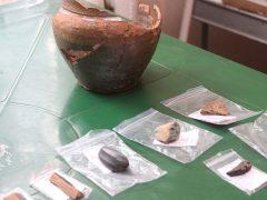 Раскопки покажут: в Талице жили люди в период мезолита?