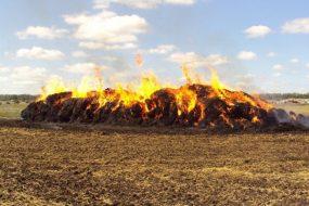 В огне «погибло» пять тонн сена