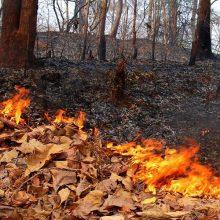 Внимание – осенний пожароопасный период