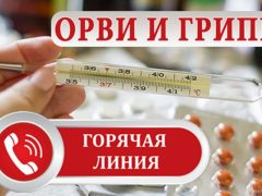 Заработала «горячая линия» по профилактике гриппа и ОРВИ
