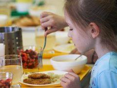 Свердловскому региону не положены деньги на горячее питание, пишет депутат Иванов