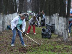 Генеральная уборка страны