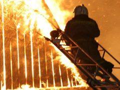 Пожар в Троицком