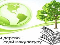 Сбор макулатуры школа №1