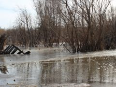 Атака с фланга: пришла нежданная вода