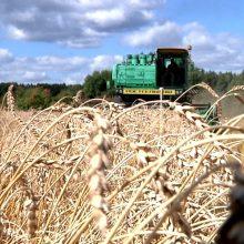 В пятницу работники сельского хозяйства соберутся вместе, чтобы подвести итоги года
