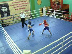 Раунд за раундом: В Талице прошел Областной турнир по боксу