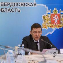 Губернатор поручил правительству области выполнить установки Президента в ситуации с COVID-19