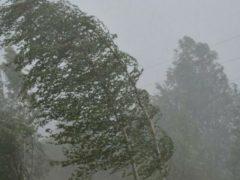 В Свердловскую область вновь придут ливни, грозы и град