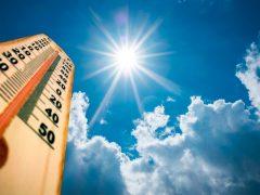 В Свердловской области ожидается аномально жаркая погода