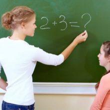 Программа «Земский учитель» начнет работать с 2020 года