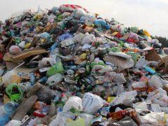 Эксперт рассказал, чем грозит промедление в реализации экологической реформы