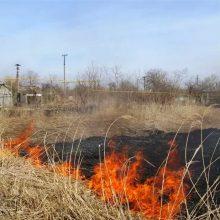 В Свердловской области ожидается высокая пожарная опасность