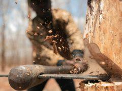 В Байкалово возбуждено уголовное дело по факту незаконной рубки леса