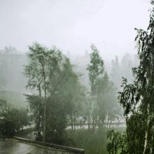 Прошел ураган